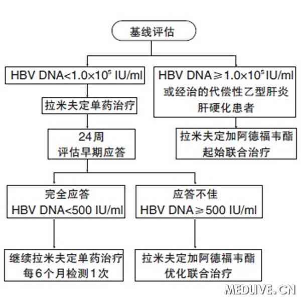 代偿性乙型肝炎肝硬化患者的拉米夫定优化治疗示意图