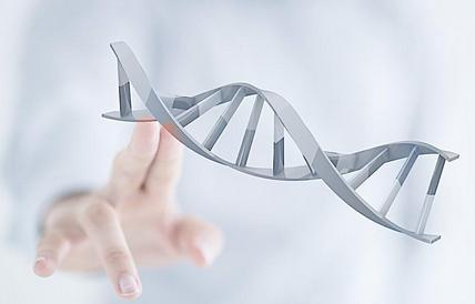 1986年,转基因酵母乙肝疫苗获得FDA的上市批准。此后,同样利用转基因技术,人类将乙肝病毒抗原基因转移到其他生物细胞中,获得了多种乙肝疫苗的生产技术。