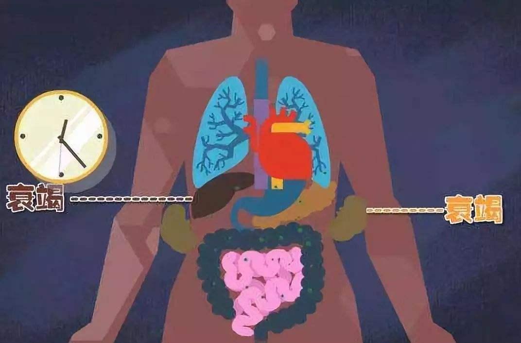 什么是肝衰竭